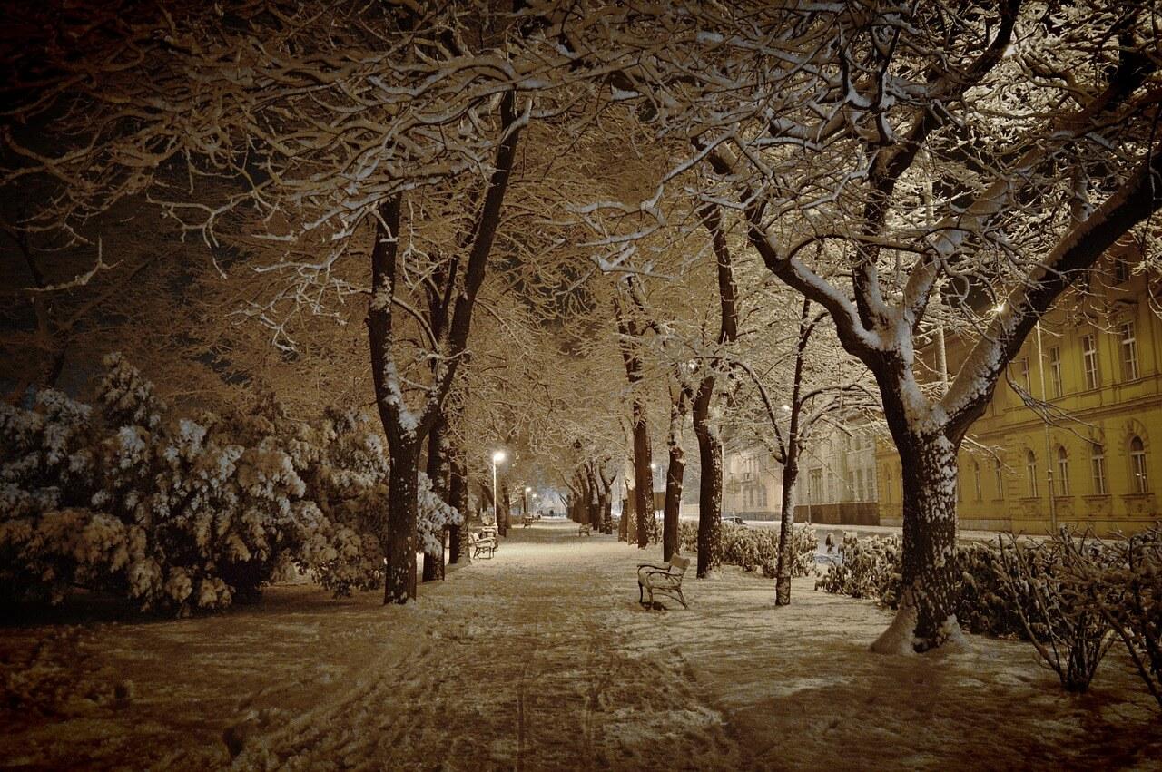 A téli Zichy-liget sétánya